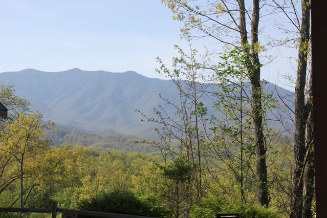 Prime Time Cabin's view of the Smokey Mountains from the back deck.